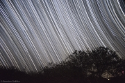 StarTrails at the Kruger Park